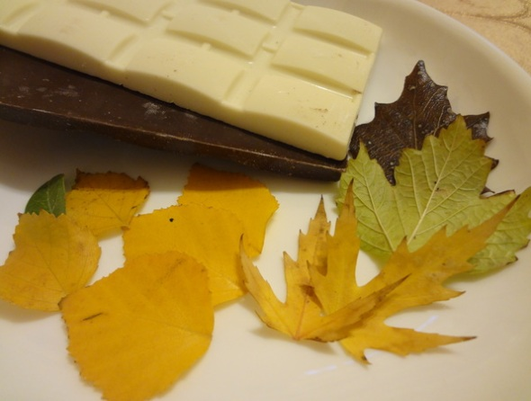 Продукты и инструменты для изготовления шоколадных листиков