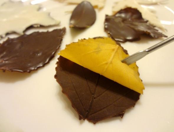 Шаг 6 - отделите натуральные листья от шоколадных