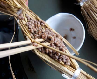 Процесс ферментации натто
