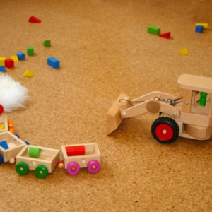 Wooden toys lying on the floor