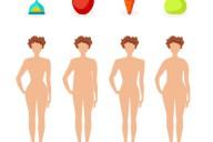 Четыре типа женского тела