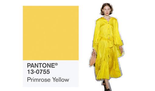 pantone_trendfarbe_2017_primerose_yellow