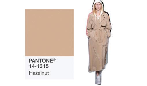 pantone_trendfarbe_fr__hjahr_2017_hazelnut