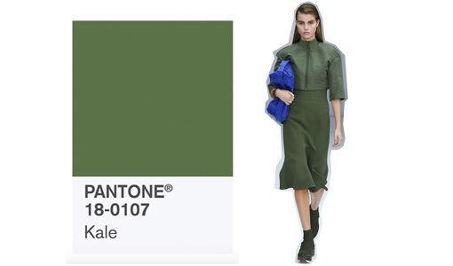 pantone_trendfarbe_fr__hjahr_2017_kale