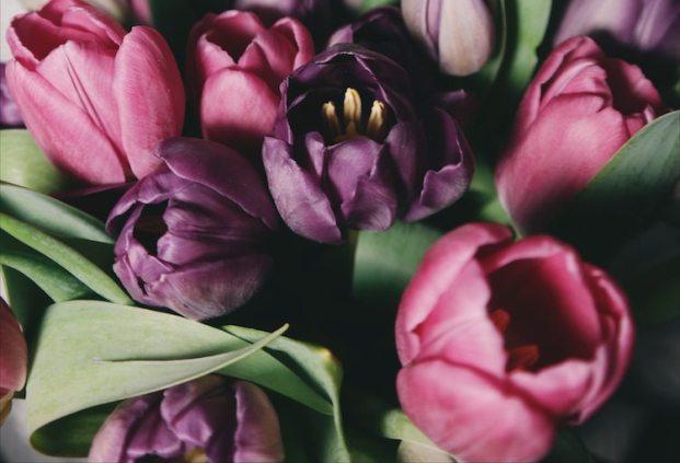cvety-na-Den-materi