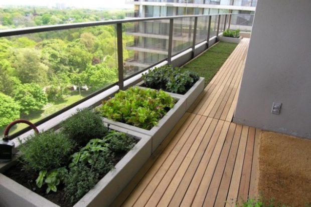 ovoshhi-na-balkone