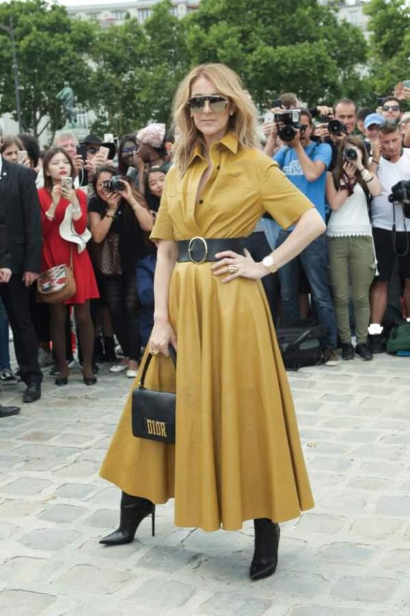 Селин Дион в горчичном платье