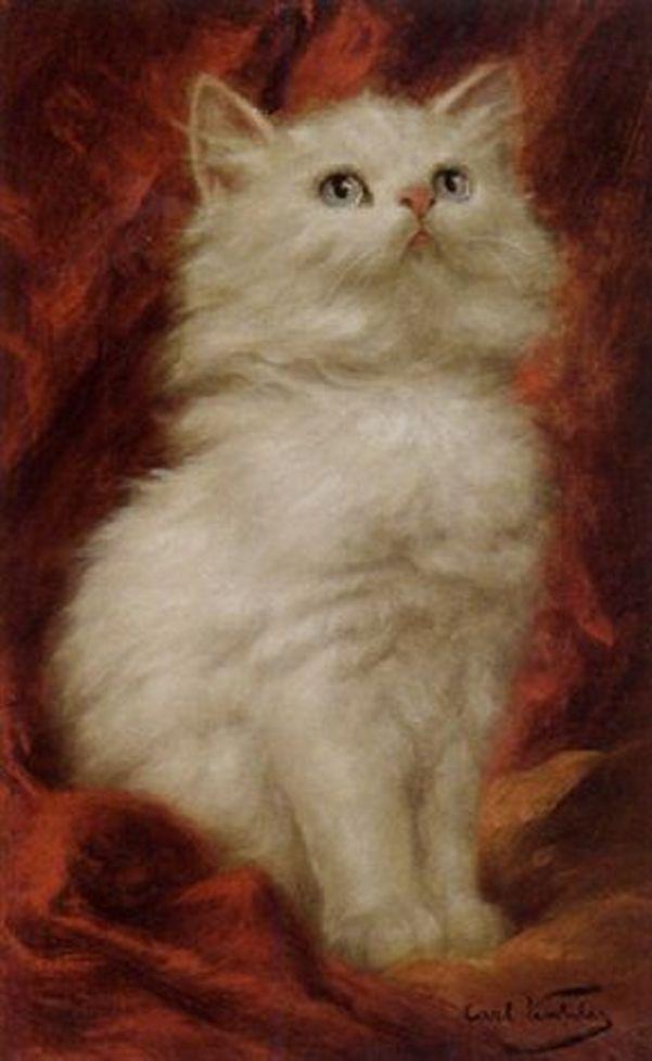 Длинношёрстный белого цвета с голубыми глазами. Карл Калер (1855-1906), американский и австрийский художник
