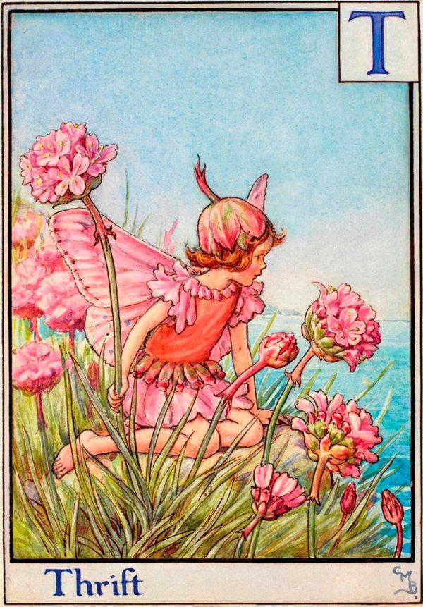 Цветочный алфавит. Фея армерии приморской Сесиль Мэри Баркер