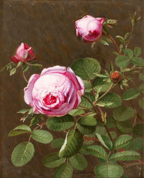 Розы, 1885. Отто Дидрик Оттесен (1816-1892), датский художник