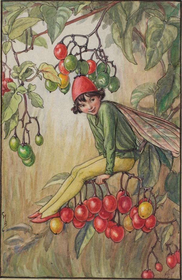Фея пасленовых ягод