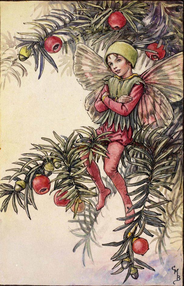 Тисовая фея