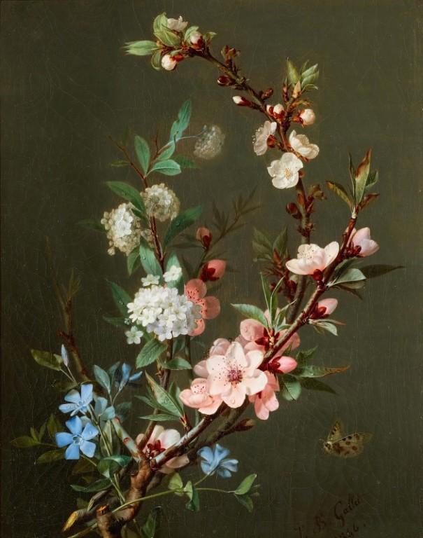 Натюрморт с ветвями вишни, калины, барвинком и бабочкой (1846). Жан-Батист Галле (после 1820 - после 1848), французский художник