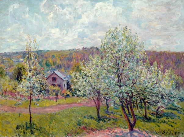 Весна в окрестностях Парижа, цветение яблони, 1879. Альфред Сислей
