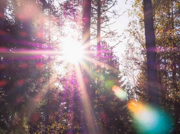 Solnechnyy-svet-i-vitamin-D