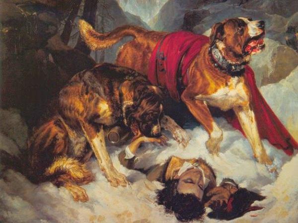 Альпийские мастифы, реанимирующие несчастного путешественника, 1820. Эдвин Генри Ландсир (1802-1873), британский художник