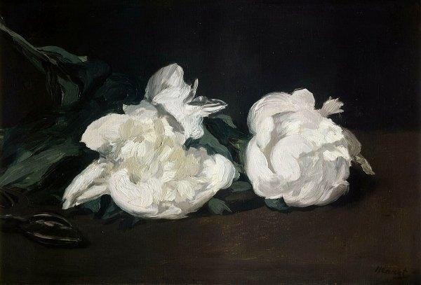 Белые пионы и ножницы. Эдуард Мане (фр. Édouard Manet, 1832, Париж - 1883, Париж), французский живописец, гравёр, один из один из родоначальников импрессионизма.