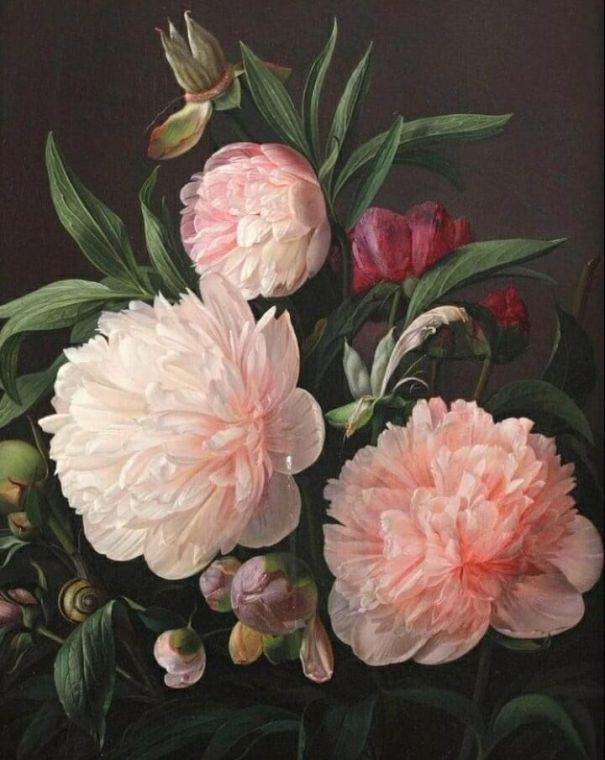 Цветущие пионы. Карл Вильгельм Балсгаард (1812-1893), датский художник, известный, прежде всего, своими натюрмортами