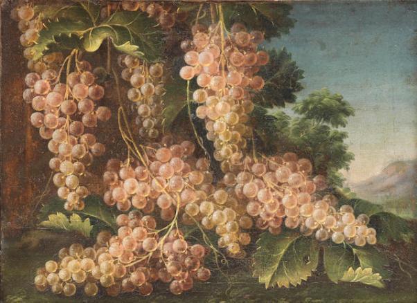 Гроздья винограда на фоне пейзажа. Франческо Малаголи (умер в 1776), итальянский художник