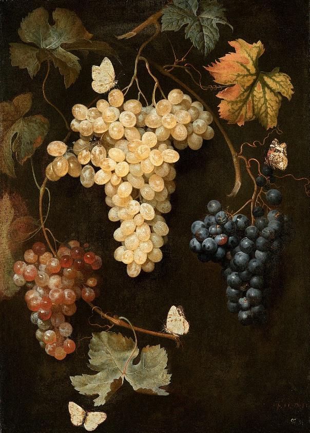 Виноград и бабочка, 1747. Филипп Фердинанд де Гамильтон (ок. 1664-1750), художник из Нидерландов, работавший в Австрии.